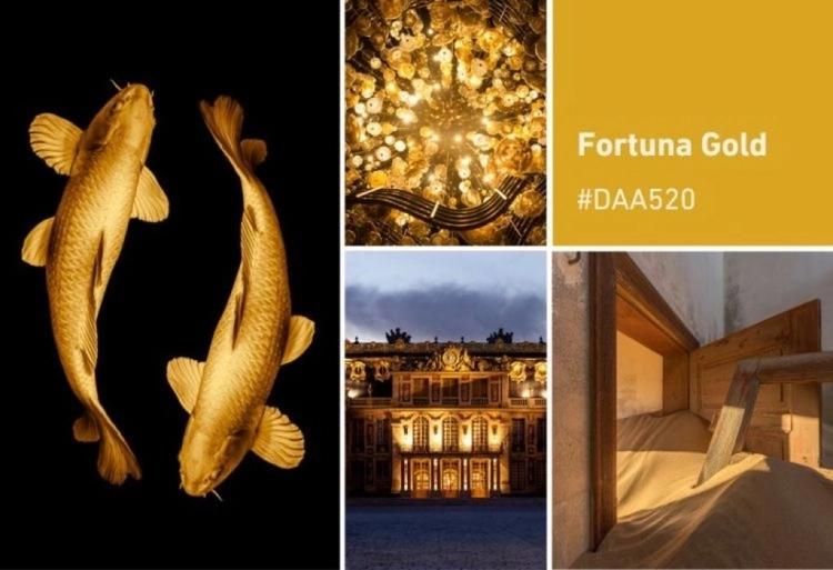 Br24 Blog Die Shutterstock Farbtrends 2021: Moodboard für die Farbe Fortuna Gold