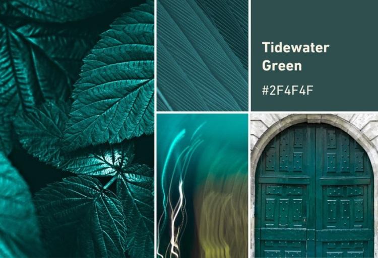 Br24 Blog Die Shutterstock Farbtrends 2021: Moodboard für die Farbe Tidewater Green