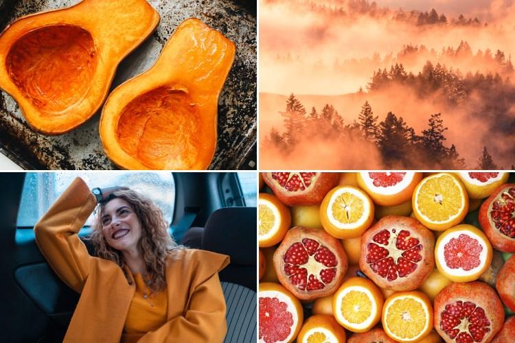 Br24 Blog 4 Farbtrends für das Weihnachtsgeschäft 2020: Beispielbilder für den Farbtrend subtiles Orange