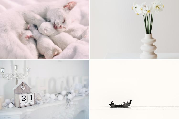 Br24 Blog 4 Farbtrends für das Weihnachtsgeschäft 2020: Beispielbilder für den Farbtrend klare Räume in Weiß