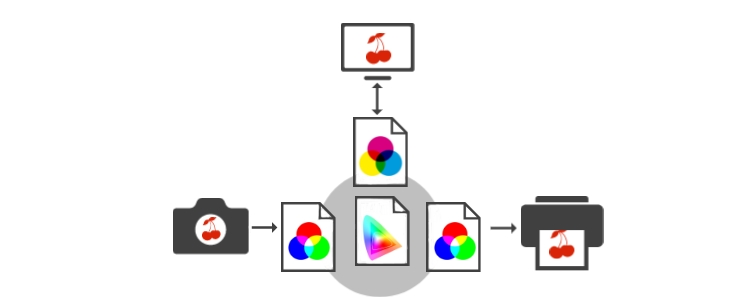 Br24 Blog All about colour: Graphic representation of colour management with colour profiles