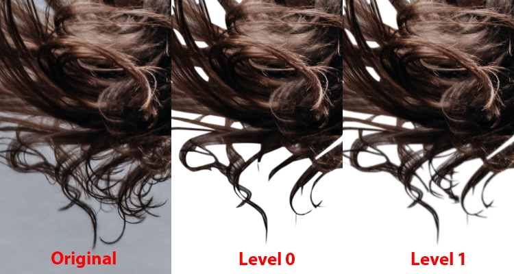 Br24 Blog All about Alpha Maskings: Detailed view of hair for comparison of different alpha masking levels. Original, level 0 and level 1