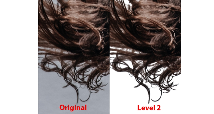 Br24 Blog All about Alpha Maskings: Detailed view of hair for comparison of different alpha masking levels. Original and level 2