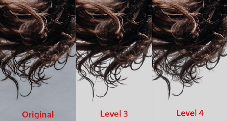 Br24 Blog All about Alpha Maskings: Detailed view of hair for comparison of different alpha masking levels. Original, level 3 and level 4