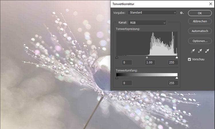 Br24 Blog Farbkorrektur: Ansicht des Dialogfelds zur Tonwertkorrektur in Photoshop