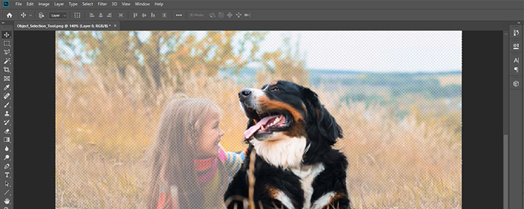New AI-powered Object Selection Tool for Photoshop