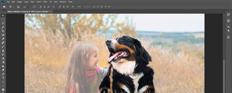 Neues KI-basiertes Objektauswahl-Werkzeug für Photoshop