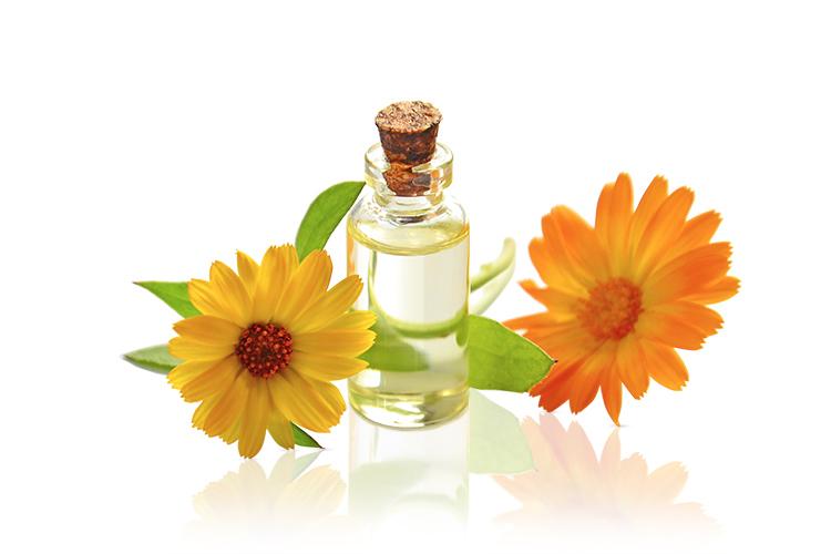 Br24 Blog Schatteneffekte: Reflexionsschatten - kleine Glasflasche mit Aromaöl und zwei Blüten