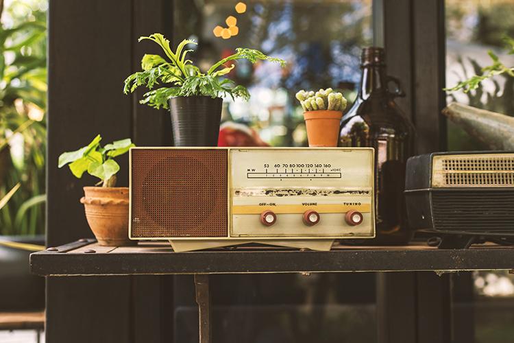 Br24 Blog Visuelle Trends 2018 Zurück zum Ursprung: Vintage Radio auf einem Tisch und Pflanzen