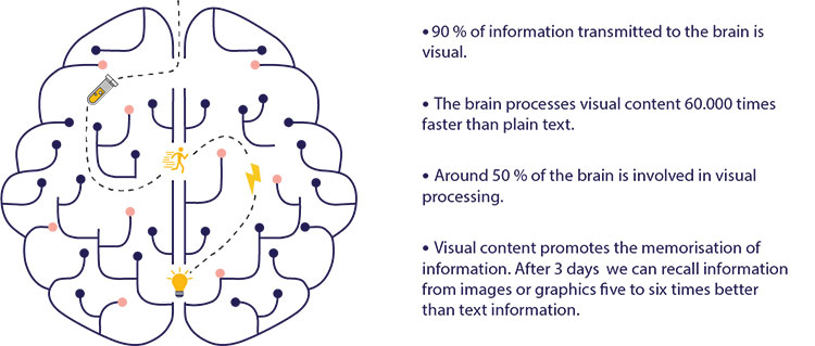Br24: Infographic facts about importance of visuals related to human brain