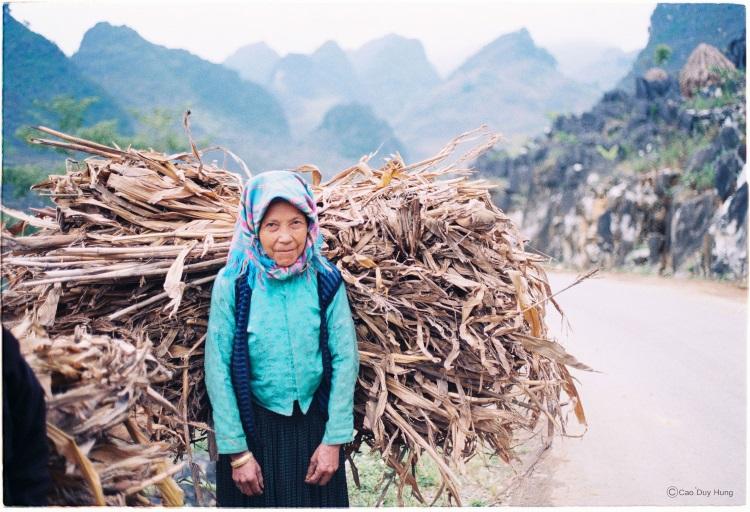Br24: Vietnamese woman during harvest season/ Vietnamesische Frau während Erntesaison