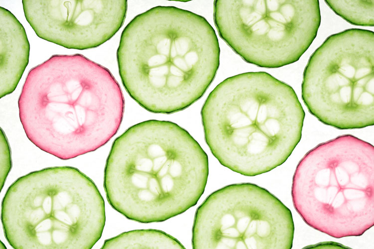 Br24 Colour Correction: cucumber slices in green and pink / Br24 Farbkorrektur: Gurkenscheiben in Grün und Pink