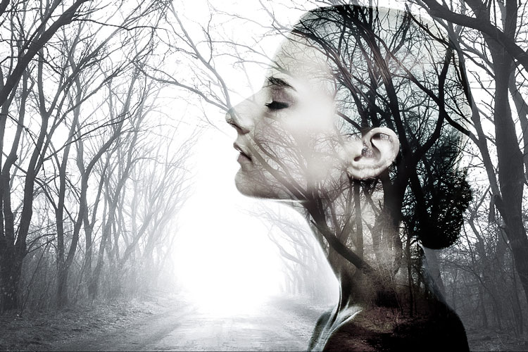 Br24 Composing: profile of a beautiful woman merged with black and white forest scenery / Br24 Composing: Profil einer hübschen Frau, verschmolzen mit einer schwarz-weißen Waldlandschaft